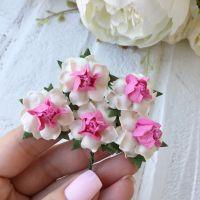 Роза, цвет бело-малиновый 2.5 см*2