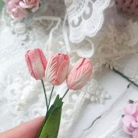 Тюльпан, цвет бело-розовый 2 см