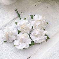 Роза, цвет белый 2.5 см*2