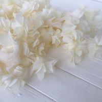 Шифоновые цветы на сетке. Цвет ванильный, диаметр 6 см